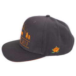 SQRTN In To The Wild Grå Snapback