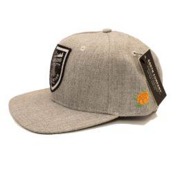 Snapback SQRTN Stock cap grå