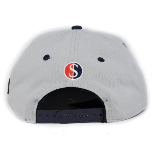 Cayler and sons keps snapback grå get it